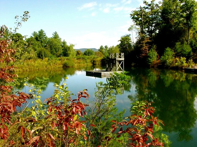 A floating dock in the lake