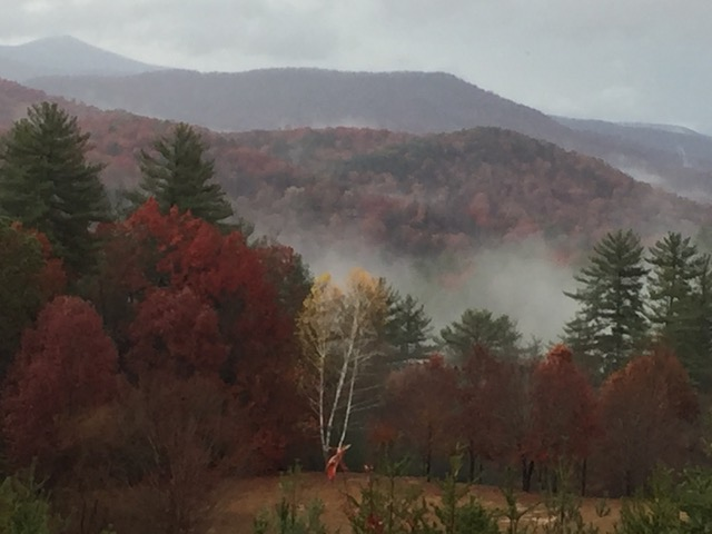 Mist in the mountain valley